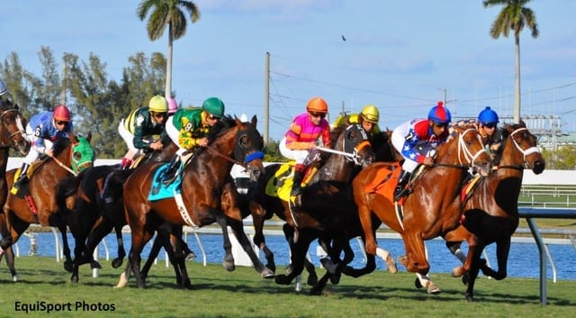 Gulfstream Park Live Racing