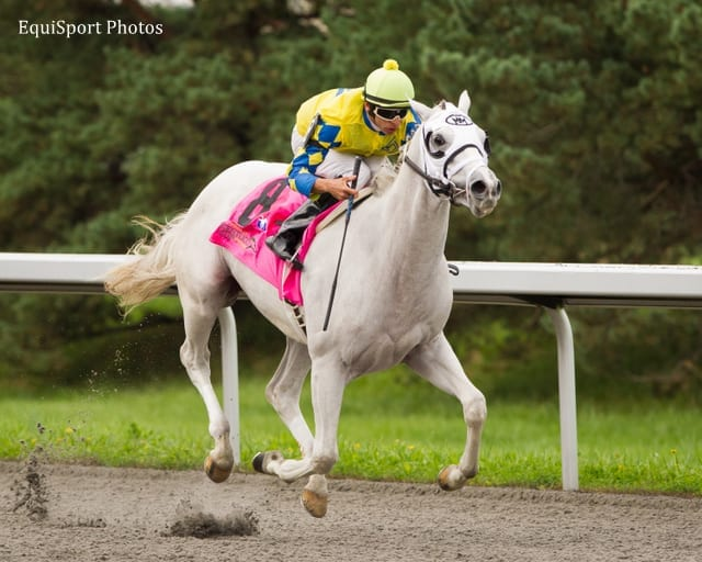 Hansen Union Rags Algorithms Among 397 Nominees To 2012