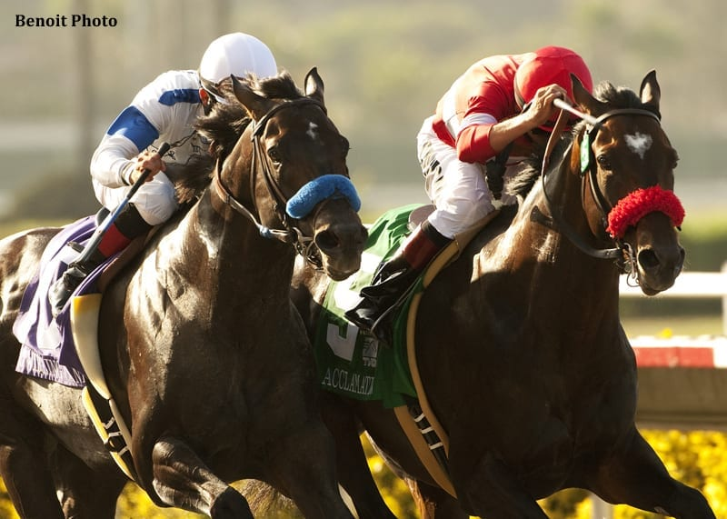 Pacific Classic Field Taking Shape Horse Racing News