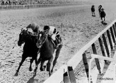 Affirmed and Alydar battle to the wire in the 1978 Belmont, the last time the Triple Crown was captured