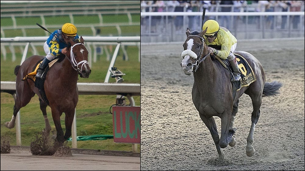 Twinspires Com Weekend Stakes Where To Watch Horse