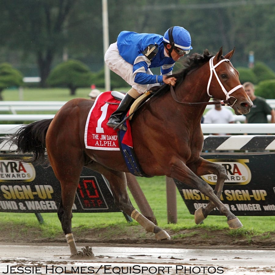 Alpha Goes Wire To Wire In Jim Dandy Travers Up Next