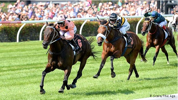 Black Caviar wins Lightning Stakes for 23rd consecutive win
