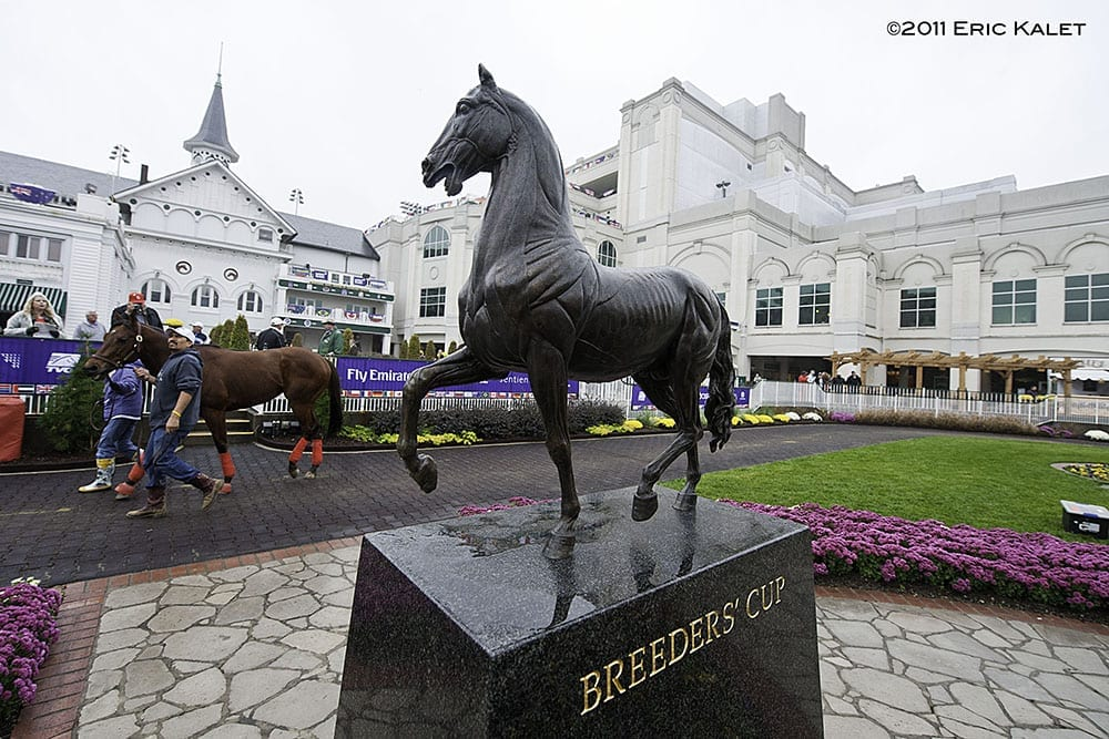 The Breeders' Cup was last held at Churchill Downs in 2011
