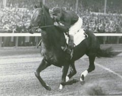 Triple Crown winner Citation won 19 of 20 starts as a 3-year-old in 1948