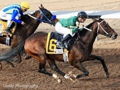 Daddy Nose Best, shown winning the Sunland Derby, was named the 2013 Remington Park Horse of the Meeting