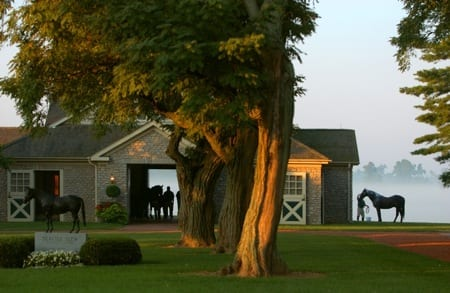 Several Ky Farms Hosting Open Houses Horse Racing News