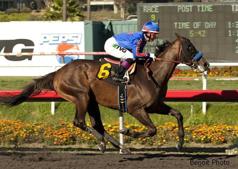 Game On Dude Gives Baffert 1 2 Sweep In Hollywood Gold Cup