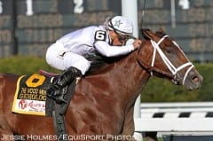 Gemologist, an undefeated 2013 Kentucky Derby contender, was one of the horses Pippin was erroneously connected with