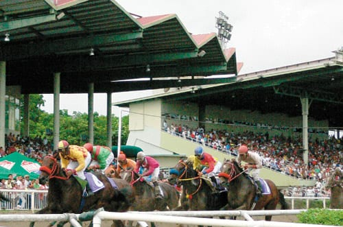 Panama Track Revels In Hosting Classic Better Fortunes