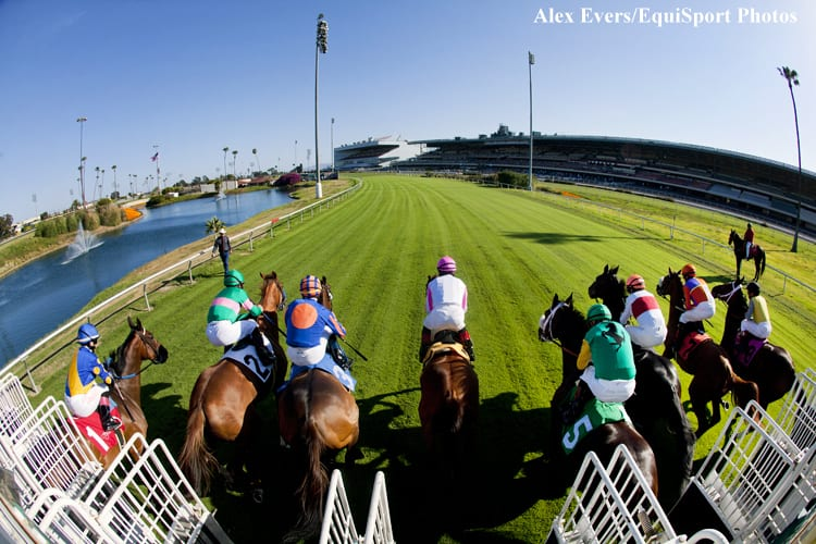 High Anxiety in California - Horse Racing News | Paulick Report