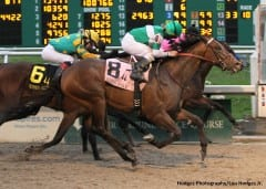 Ive Struck a Nerve edges Code West to win Risen Star