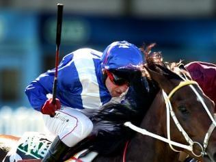 Jockey Whip