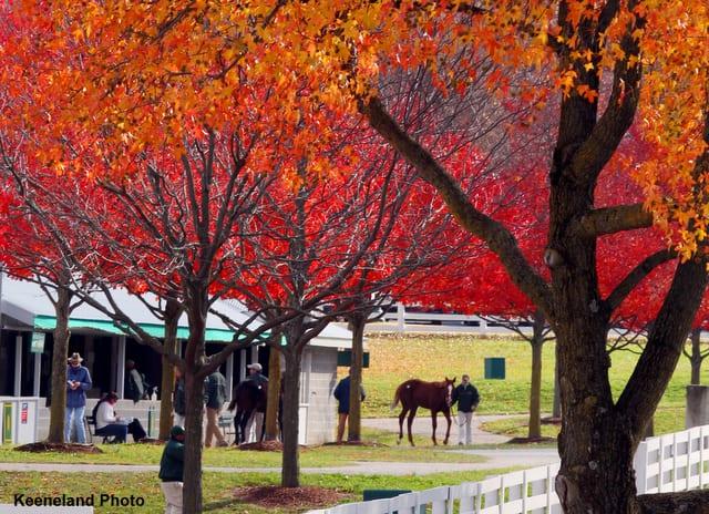 keeneland racing season 2012 fall meet