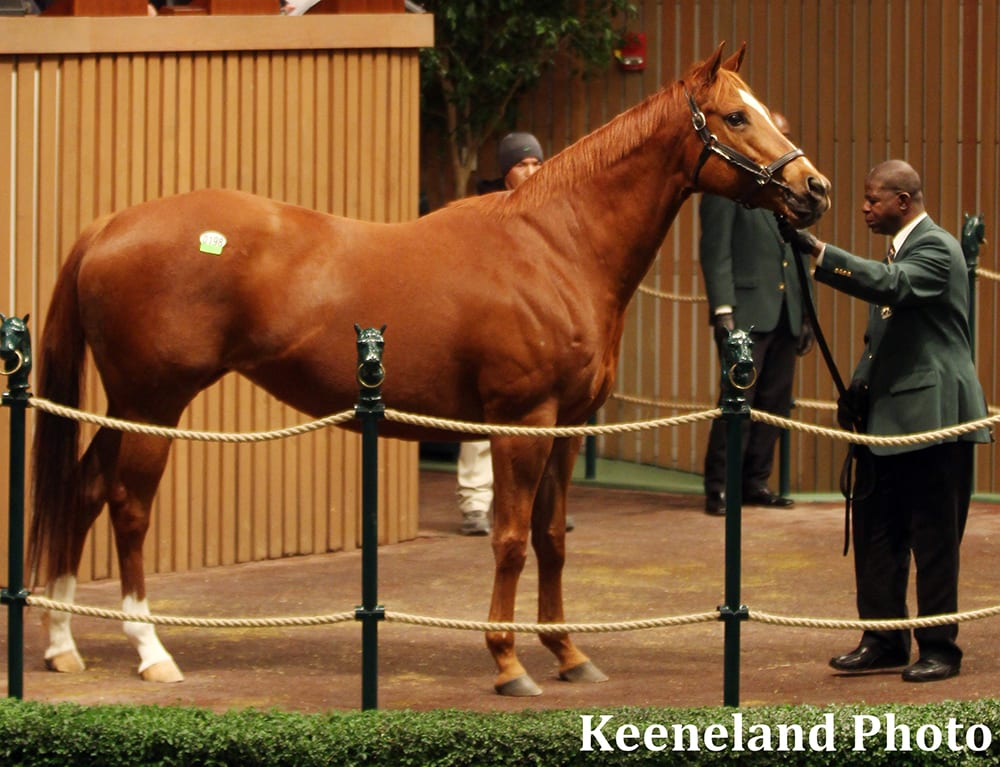 Keeneland Strong Start Across The Board Gains For
