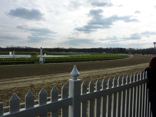 Laurel Ready To Run Six Stakes For Virginia Breds Horse