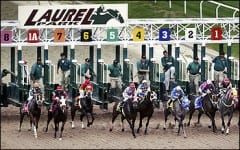Changes to the wagering menu at Laurel Park will include adding superfectas, rolling doubles and Pick 3's and a third Pick 4