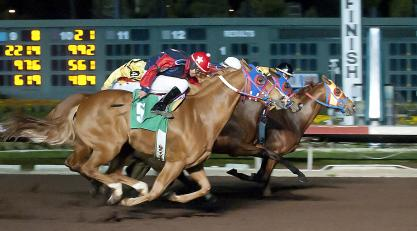 2018 Breeders Cup Is Where