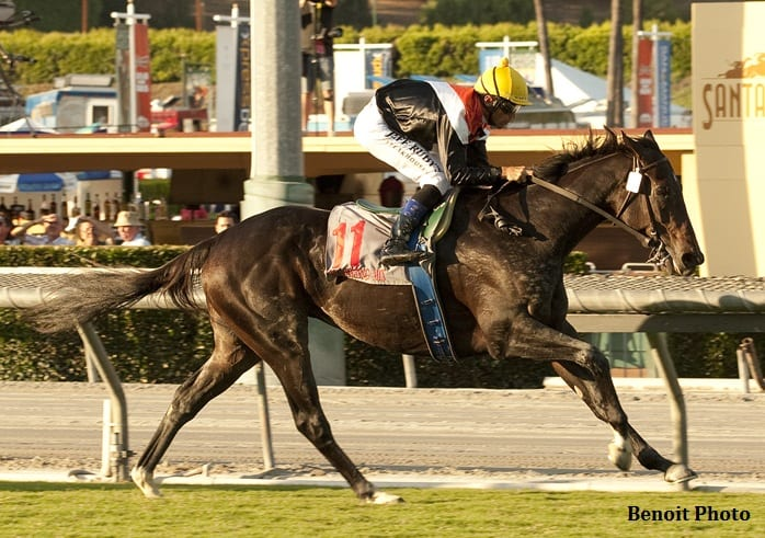 Marketing Mix wins Rodeo Drive