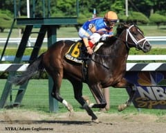 Overdriven, winning the 2013 Sanford Stakes