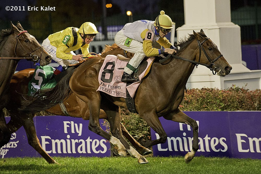 Perfect Shirl wins Filly & Mare Turf