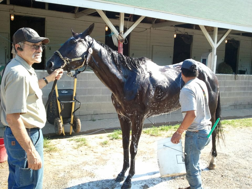 Trainer Pete Pizzo with Rena Starlight