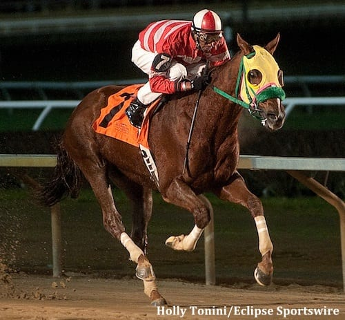 Rapid Redux gallops into history books - Horse Racing News