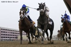 Revolutionary (rail) gets up to win 2013 Withers Stakes