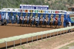 Ruidoso Downs, home of the All American Futurity, Quarter horse racing's signature event