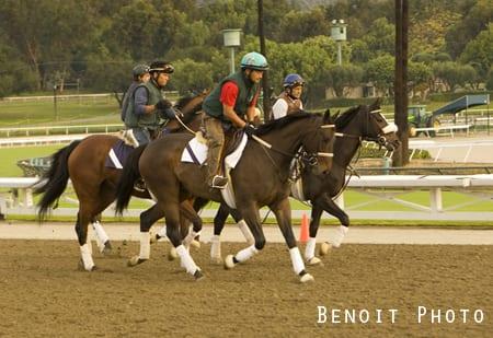 La Times Santa Anita Leads Ca Tracks In Horse Racing