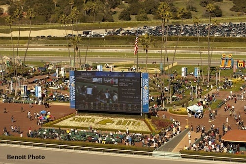 44,579: biggest opening day in 17 years - Horse Racing News