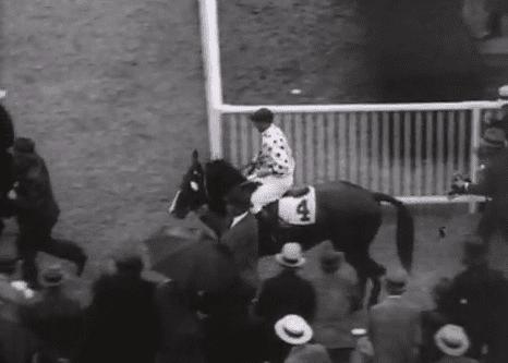 Gallant Fox, Triple Crown Winner 1930