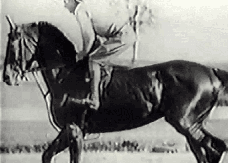 Omaha, 1935 Triple Crown winner