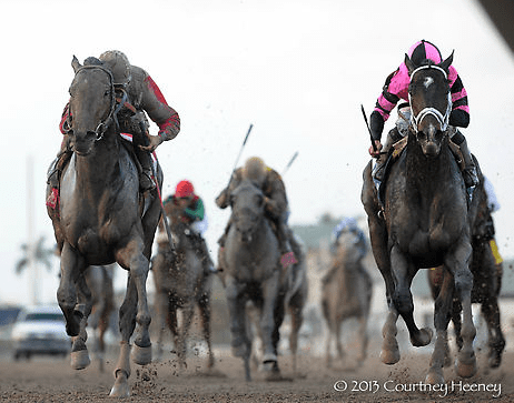 Orb wins Fountain of Youth over Violence
