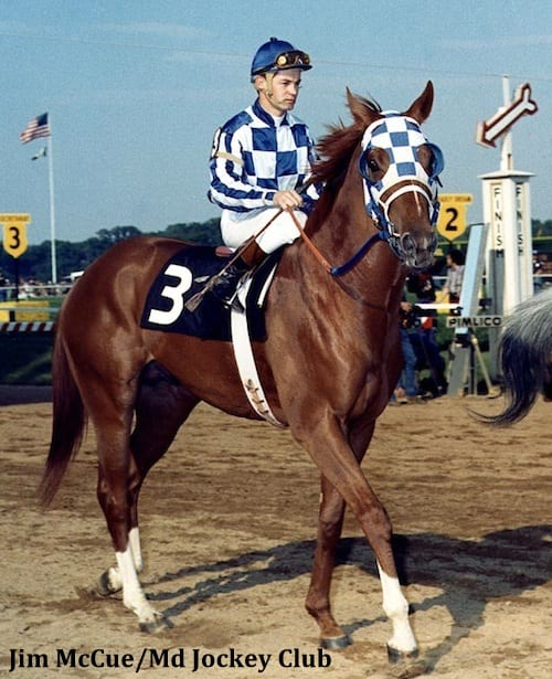'Like a freight train coming': Secretariat in the 1973 Preakness