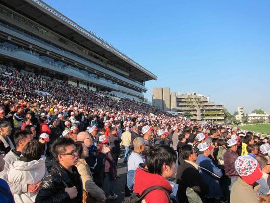 Racing fans at Sha Tin in Hong Kong.