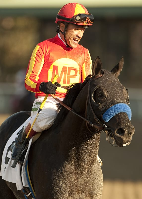 Shakin It Up after winning San Vicente Stakes