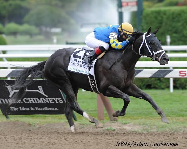 Pletcher juveniles no one-hit wonders - Horse Racing News