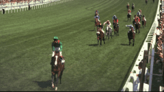 Shergar, piloted by 19-year-old Walter Swinburn, raced to a 10-length victory in the 1981 Epsom Derby