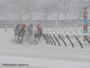 Nyra Announces 2015 Aqueduct Winter Stakes Schedule