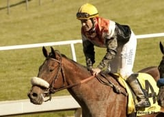 Gary Stevens wins first race since coming out of retirement, Jan. 12