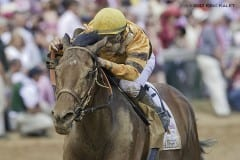 Successful Dan set a track record when winning the 2012 Alysheba Stakes