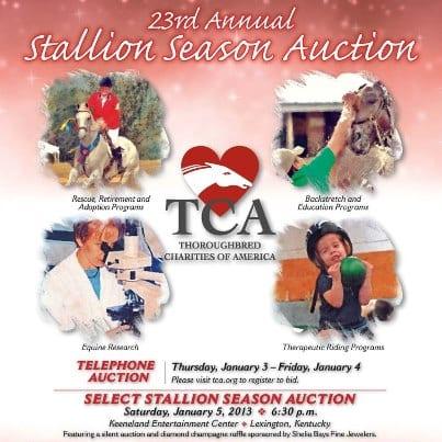 TCA Stallion Season Auction