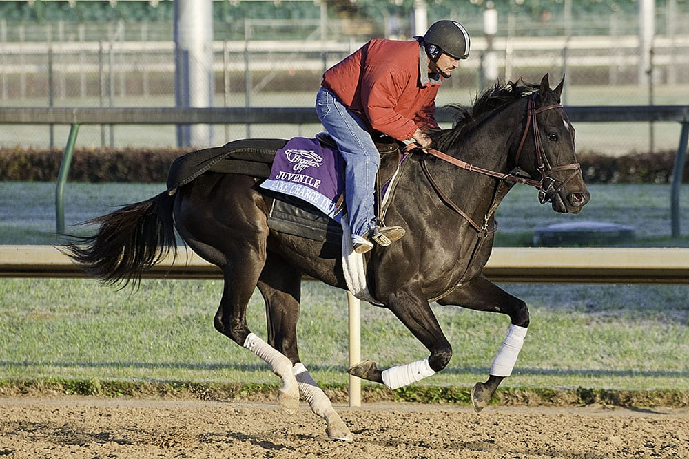 Take Charge Indy To Race Under Winstar S Colors Horse Racing News Paulick Report