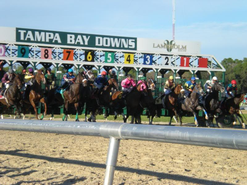 Tampa Bay Downs Schedule 2019 Weekend Cards Mark Official Closing, Opening Of Tampa Bay Downs