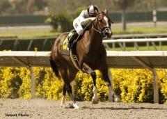 Tanda wins Rancho Bernardo