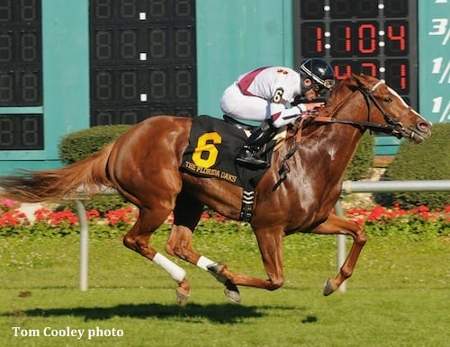 Tapicat set all the fractions and just missed the course record in her Florida Oaks victory
