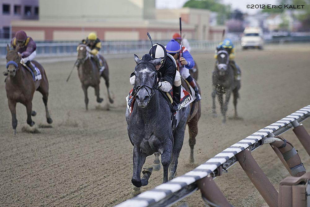 The Lumber Guy rolls in Jerome Stakes