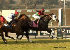 Ultimate Eagle wins Oak Tree Derby