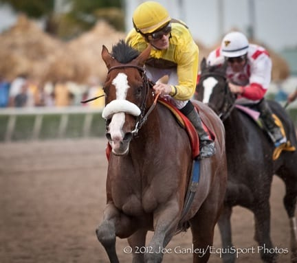 Vinery LTD presents the Paulick Derby Index: Union Rags a